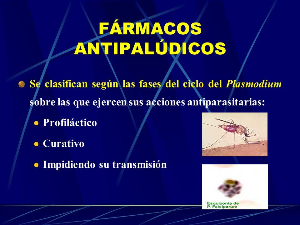FÁRMACOS ANTIPALÚDICOS Se clasifican según las fases del ciclo del Plasmodium sobre las que ejercen sus acciones antiparasitarias: Profiláctico Curati