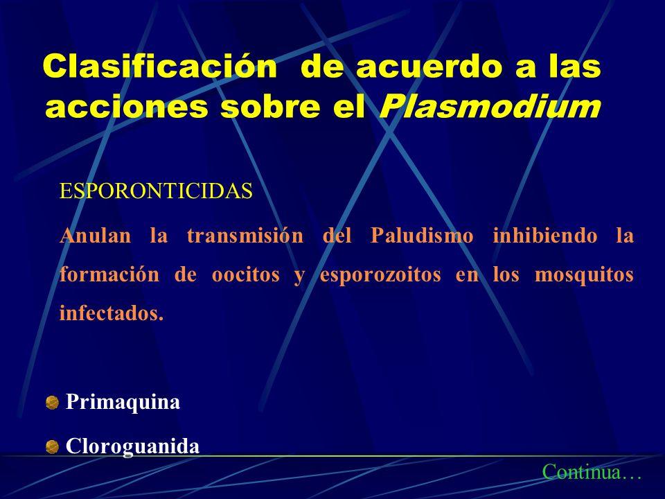 Clasificación de acuerdo a las acciones sobre el Plasmodium ESPORONTICIDAS Anulan la transmisión del Paludismo inhibiendo la formación de oocitos y es