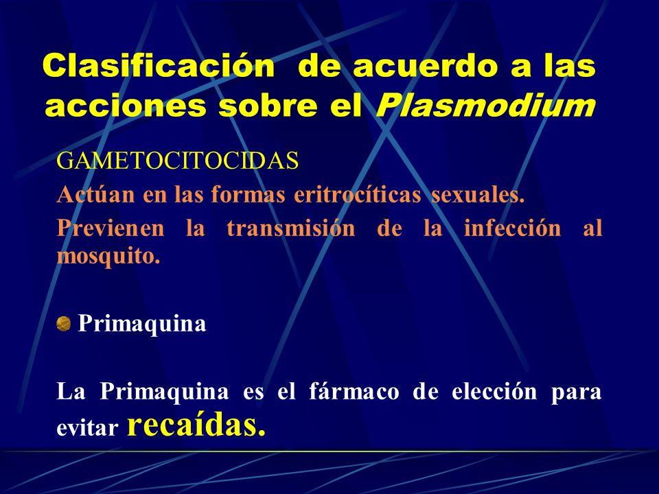 GAMETOCITOCIDAS Actúan en las formas eritrocíticas sexuales. Previenen la transmisión de la infección al mosquito. Primaquina La Primaquina es el fárm