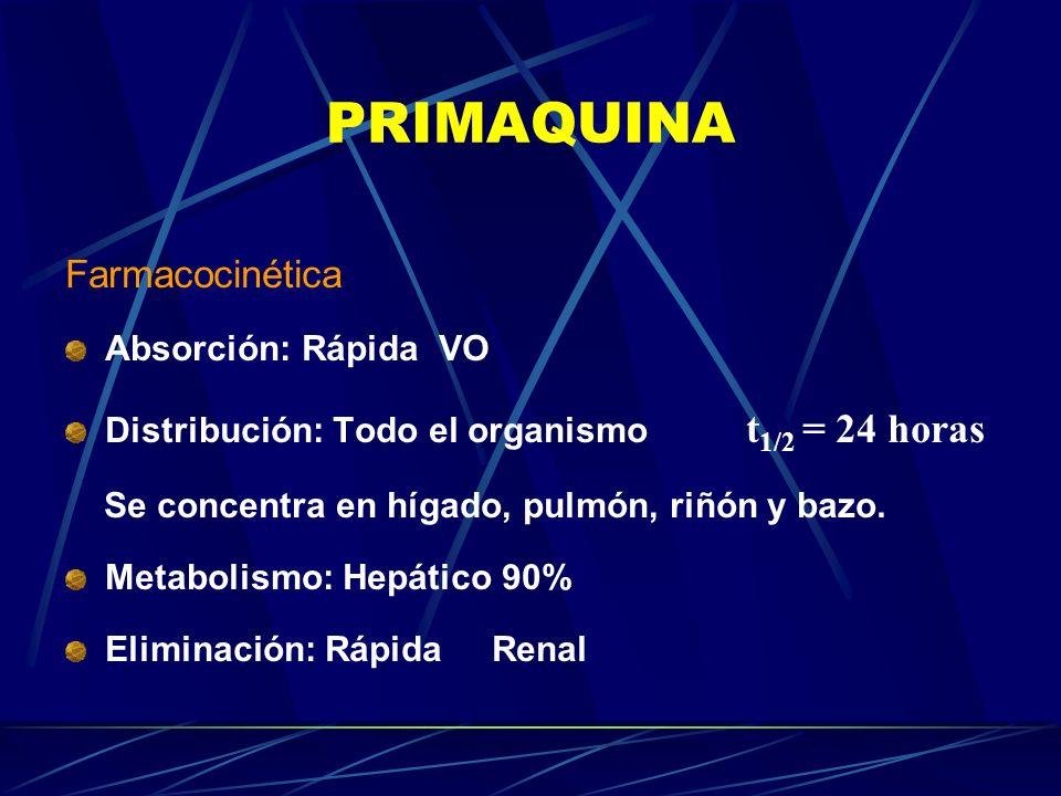 PRIMAQUINA Farmacocinética Absorción: Rápida VO Distribución: Todo el organismo t 1/2 = 24 horas Se concentra en hígado, pulmón, riñón y bazo. Metabol