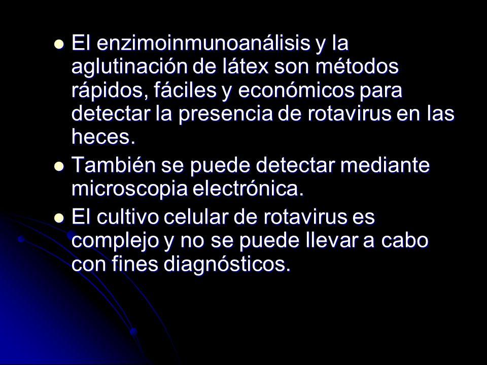 El enzimoinmunoanálisis y la aglutinación de látex son métodos rápidos, fáciles y económicos para detectar la presencia de rotavirus en las heces. El