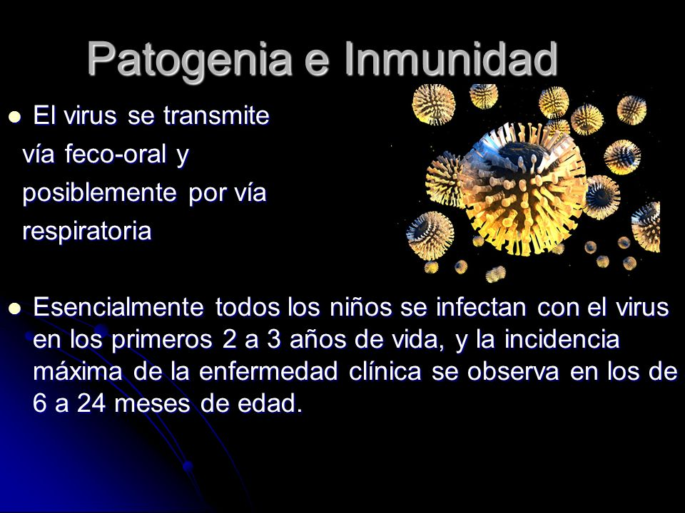Patogenia e Inmunidad El virus se transmite El virus se transmite vía feco-oral y vía feco-oral y posiblemente por vía posiblemente por vía respirator