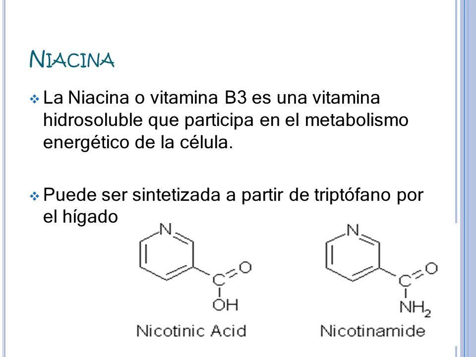 N IACINA La Niacina o vitamina B3 es una vitamina hidrosoluble que participa en el metabolismo energético de la célula. Puede ser sintetizada a partir