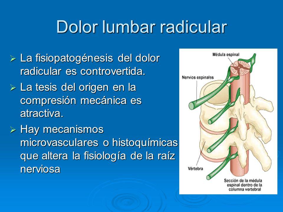 Dolor lumbar radicular La fisiopatogénesis del dolor radicular es controvertida. La fisiopatogénesis del dolor radicular es controvertida. La tesis de