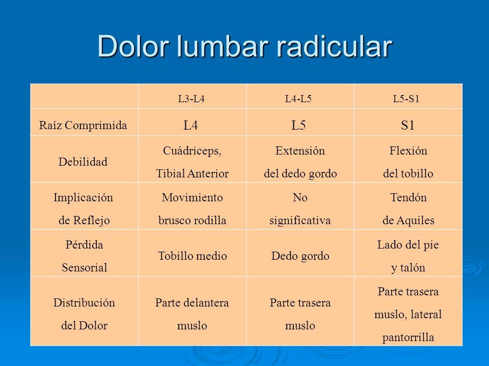 Dolor lumbar radicular L3-L4 L4-L5 L5-S1 Raíz Comprimida L4 L5 S1 Debilidad Cuádriceps, Tibial Anterior Extensión del dedo gordo Flexión del tobillo I