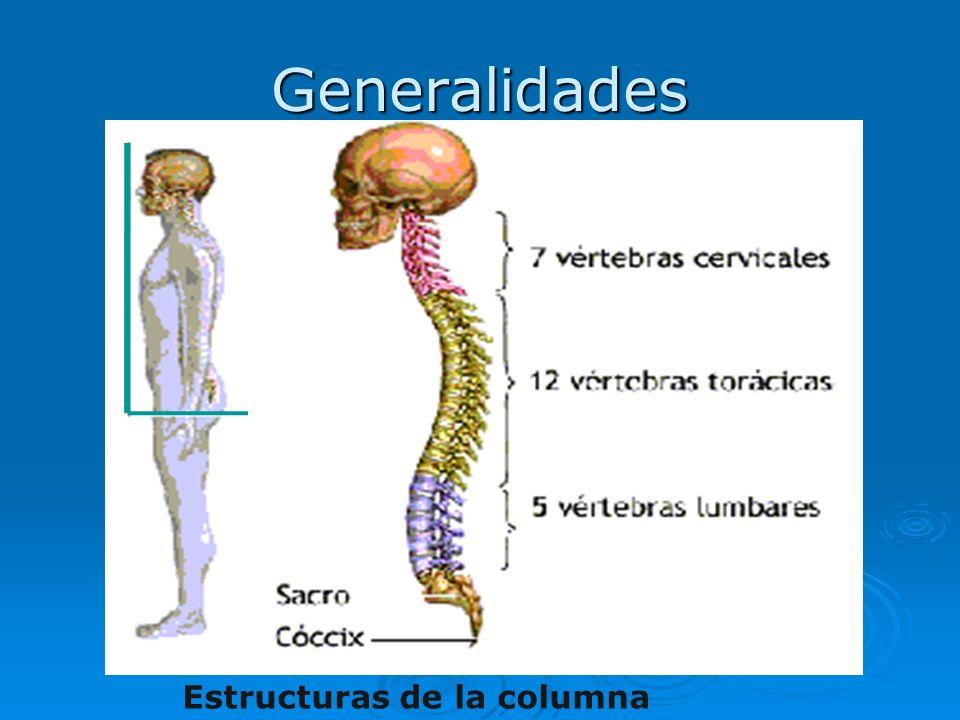 Generalidades Estructuras de la columna