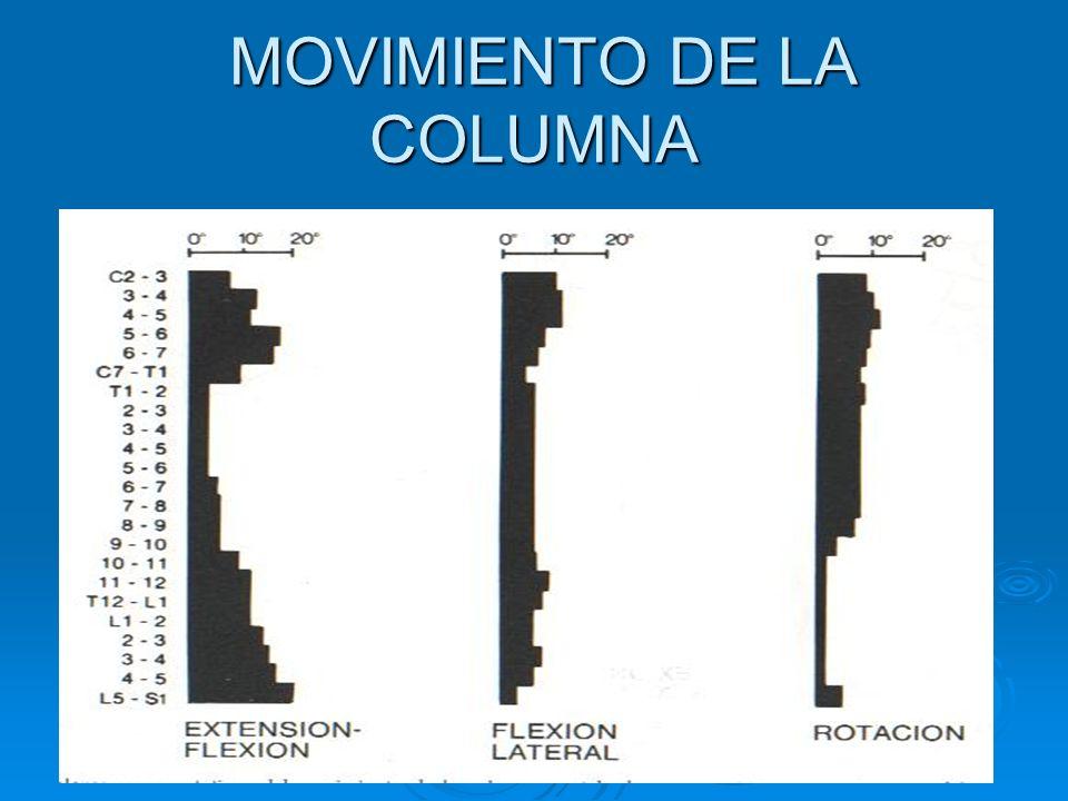 Dolor lumbar radicular Búsqueda de atrofia Palpación comparativa de masas musculares contraídas ( nalga- S1; muslo- L3, L4; pantorrilla L5, S1).