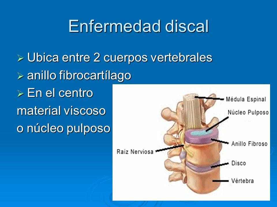 Enfermedad discal Ubica entre 2 cuerpos vertebrales Ubica entre 2 cuerpos vertebrales anillo fibrocartílago anillo fibrocartílago En el centro En el c