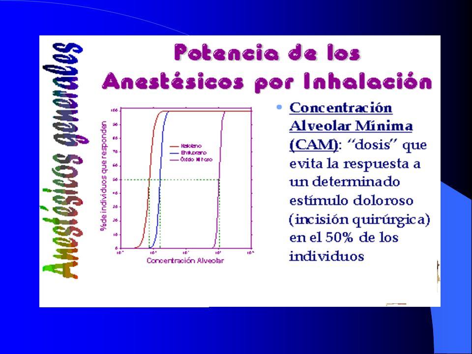 La potencia de los anestésicos generales se mide o se compara a través de un índice CAM (concentración alveolar mínima). C oncentración alveolar mínim