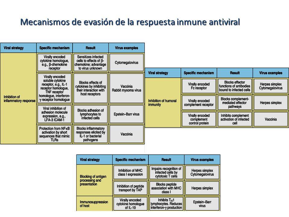 Mecanismos de evasión de la respuesta inmune antiviral