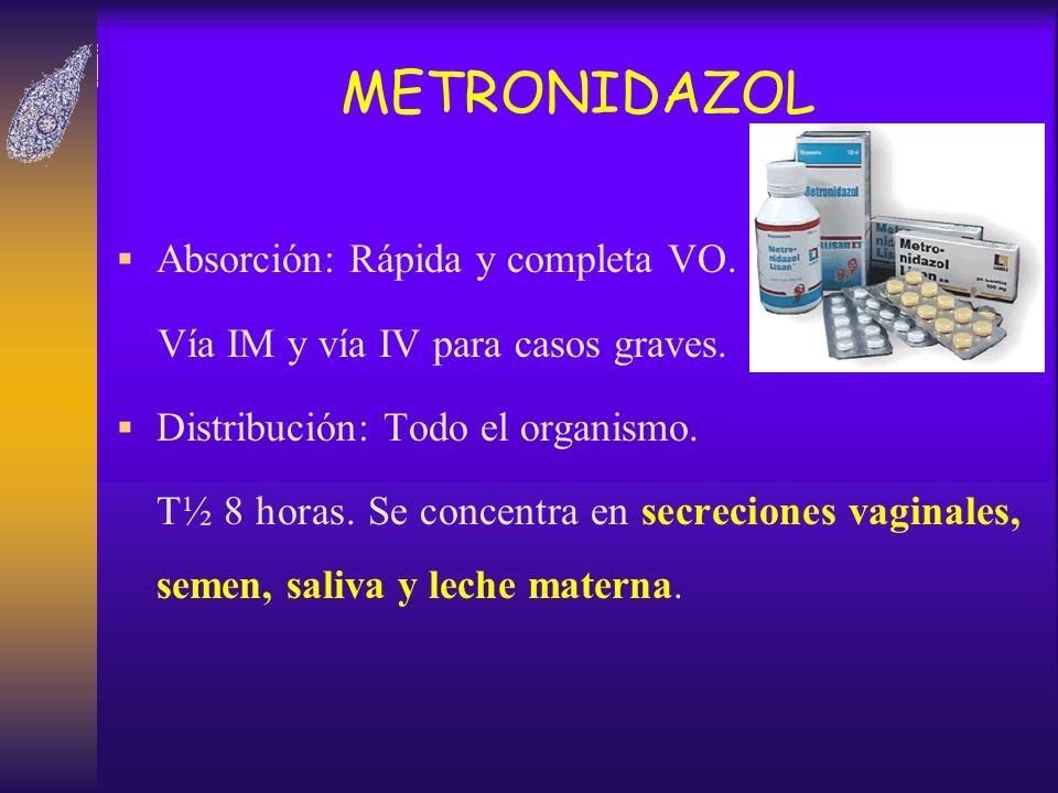 METRONIDAZOL Absorción: Rápida y completa VO. Vía IM y vía IV para casos graves. Distribución: Todo el organismo. T½ 8 horas. Se concentra en secrecio