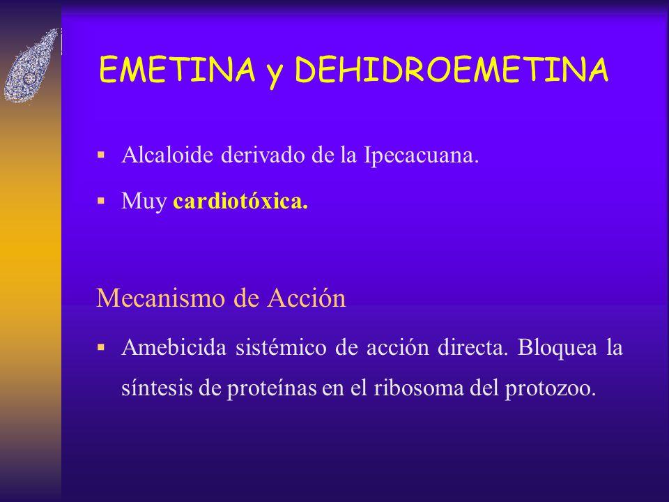 EMETINA y DEHIDROEMETINA Alcaloide derivado de la Ipecacuana. Muy cardiotóxica. Mecanismo de Acción Amebicida sistémico de acción directa. Bloquea la