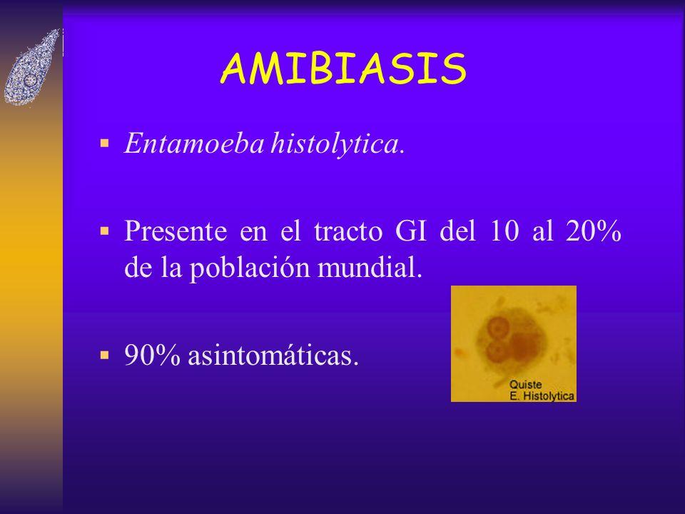 AMIBIASIS Entamoeba histolytica. Presente en el tracto GI del 10 al 20% de la población mundial. 90% asintomáticas.