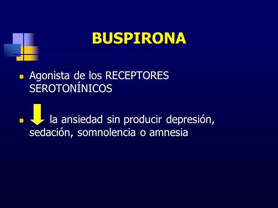 BUSPIRONA Agonista de los RECEPTORES SEROTONÍNICOS la ansiedad sin producir depresión, sedación, somnolencia o amnesia
