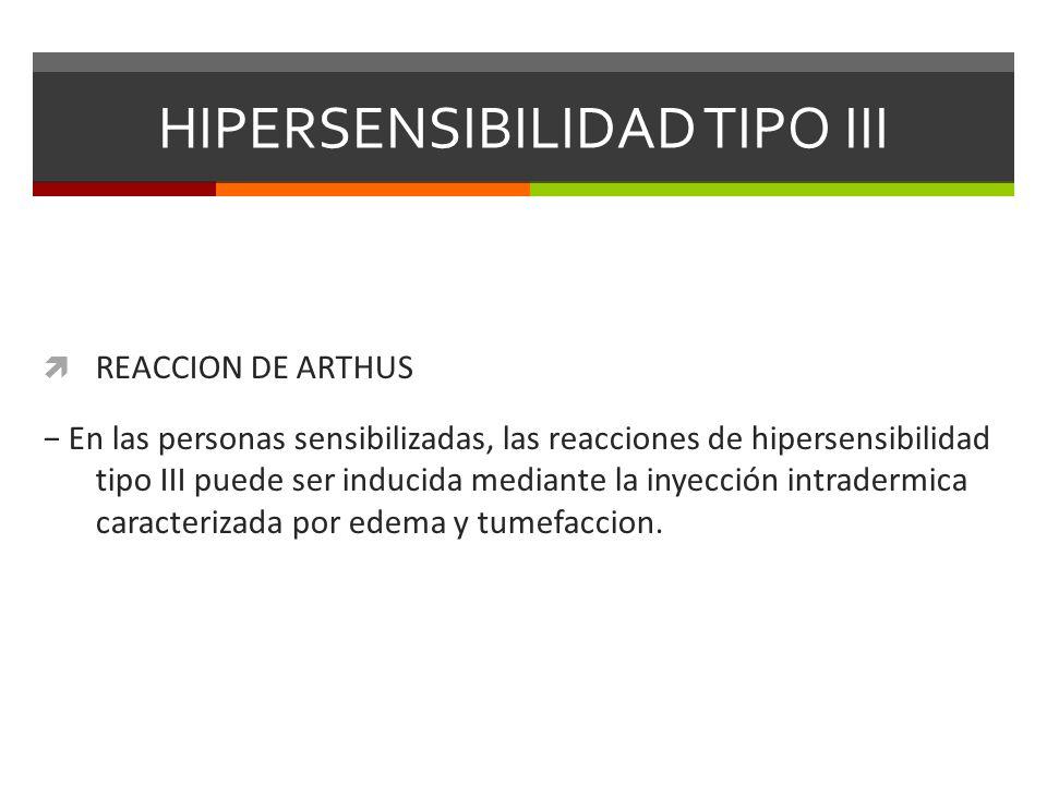 HIPERSENSIBILIDAD TIPO III REACCION DE ARTHUS En las personas sensibilizadas, las reacciones de hipersensibilidad tipo III puede ser inducida mediante