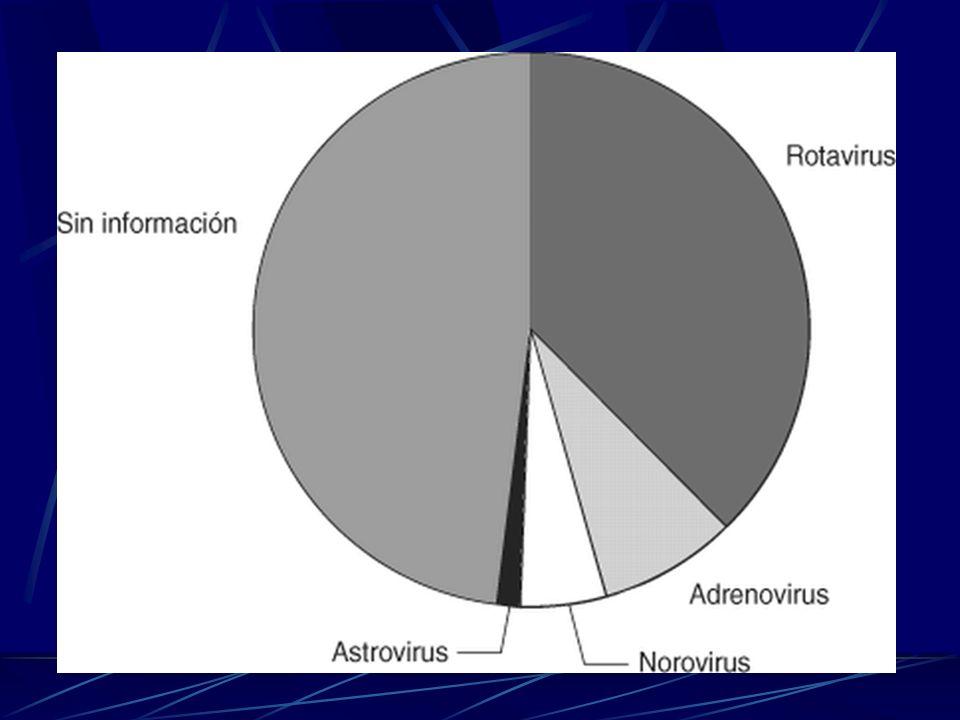 El virus se puede presentar en cualquier época del año, aunque es más frecuente en el invierno y también después de inundaciones que dan como resultado contaminación del agua.