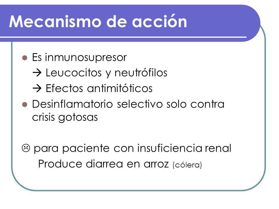 Mecanismo de acción Es inmunosupresor Leucocitos y neutrófilos Efectos antimitóticos Desinflamatorio selectivo solo contra crisis gotosas para pacient