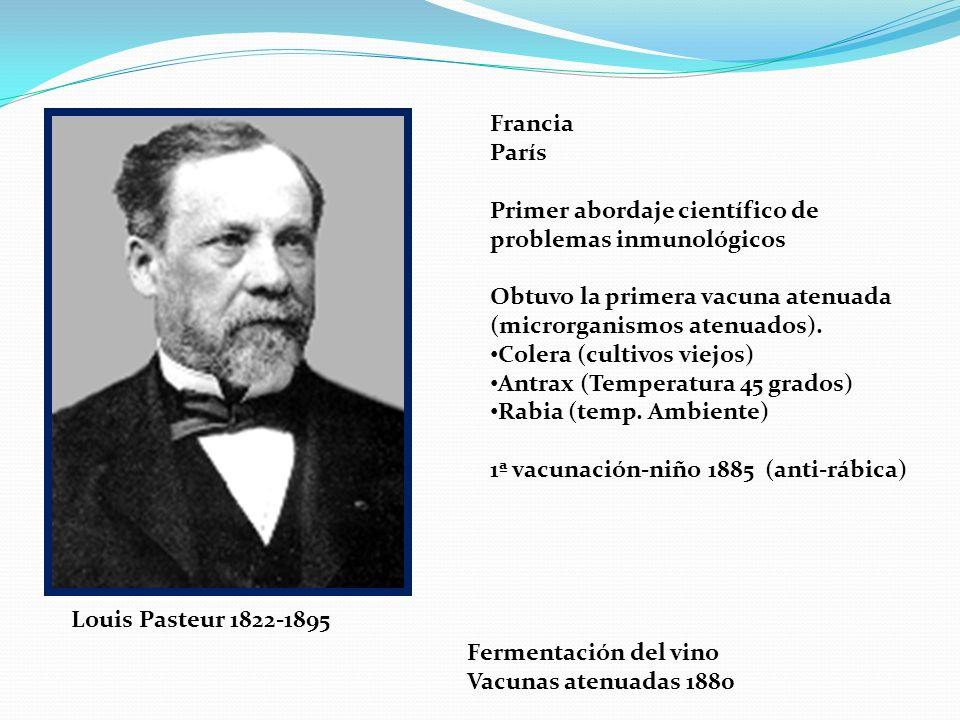 Louis Pasteur 1822-1895 Fermentación del vino Vacunas atenuadas 1880 Francia París Primer abordaje científico de problemas inmunológicos Obtuvo la pri