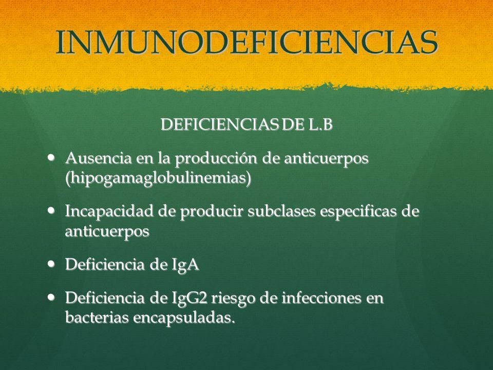 INMUNODEFICIENCIAS DEFICIENCIAS DE L.B Ausencia en la producción de anticuerpos (hipogamaglobulinemias) Ausencia en la producción de anticuerpos (hipo