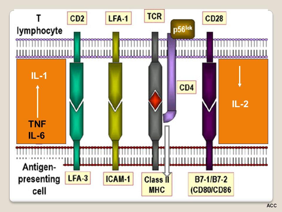 IL-2 IL-1 TNF IL-6 ACC