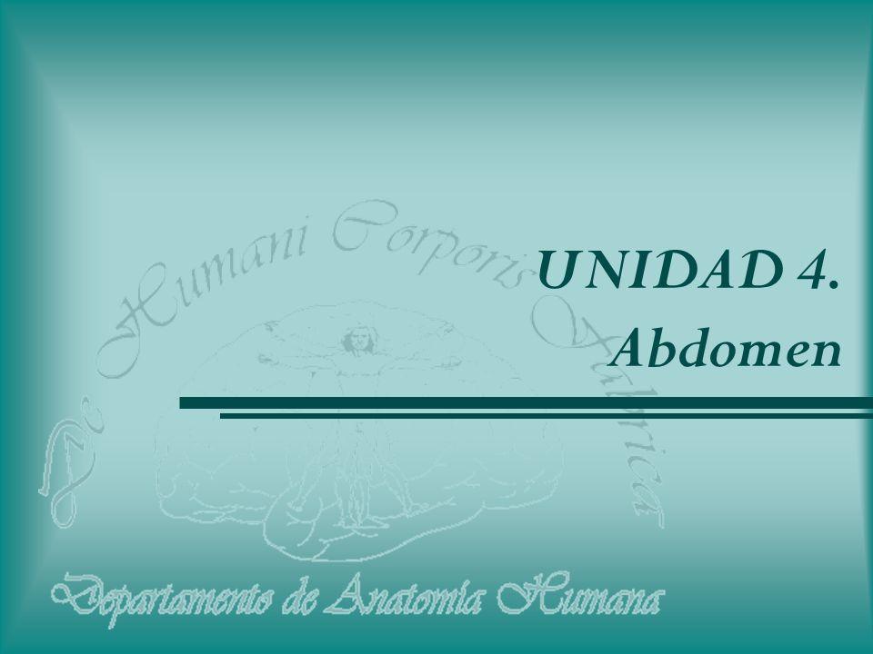 UNIDAD 4. Abdomen