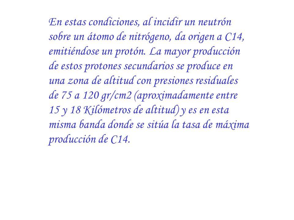 En estas condiciones, al incidir un neutrón sobre un átomo de nitrógeno, da origen a C14, emitiéndose un protón. La mayor producción de estos protones