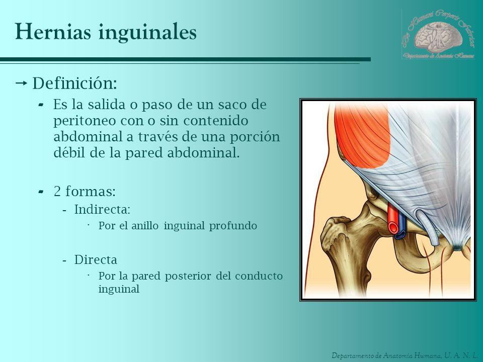 Departamento de Anatomía Humana, U. A. N. L. Hernias inguinales Definición: - Es la salida o paso de un saco de peritoneo con o sin contenido abdomina