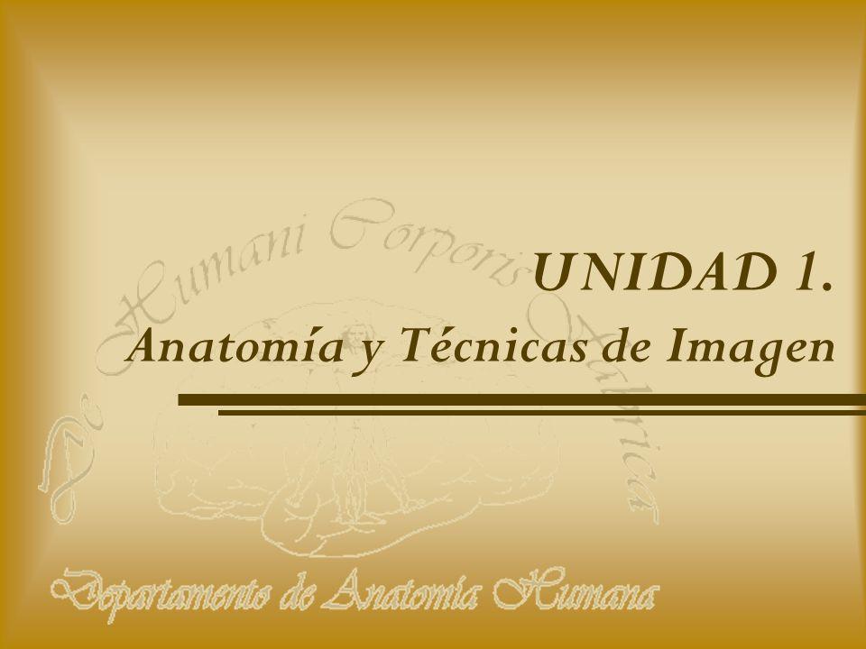 UNIDAD 1. Anatomía y Técnicas de Imagen