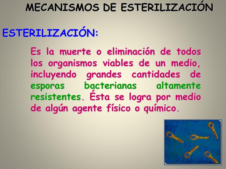 ESTERILIZACIÓN: Es la muerte o eliminación de todos los organismos viables de un medio, incluyendo grandes cantidades de esporas bacterianas altamente