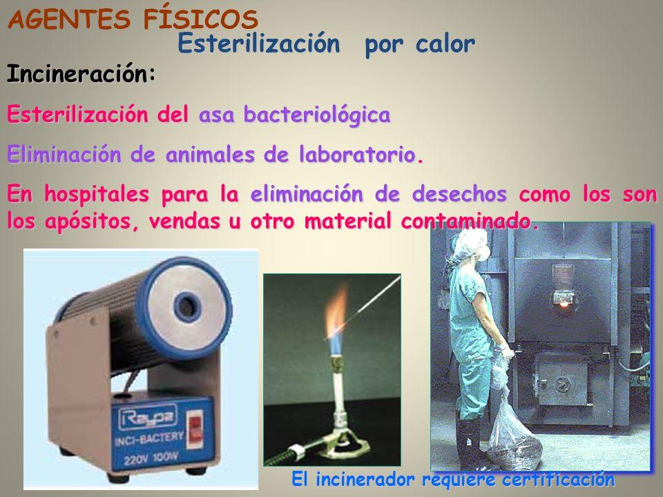 Esterilización por calor Incineración: Esterilización del asa bacteriológica Eliminación de animales de laboratorio. En hospitales para la eliminación