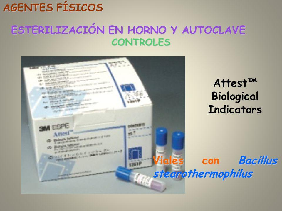 CONTROLES ESTERILIZACIÓN EN HORNO Y AUTOCLAVE AGENTES FÍSICOS Attest Biological Indicators Viales con Bacillus stearothermophilus