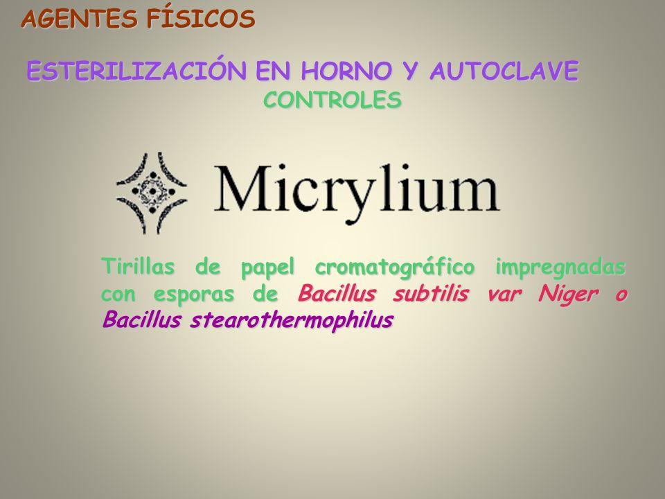 CONTROLES ESTERILIZACIÓN EN HORNO Y AUTOCLAVE AGENTES FÍSICOS Tirillas de papel cromatográfico impregnadas con esporas de Bacillus subtilis var Niger