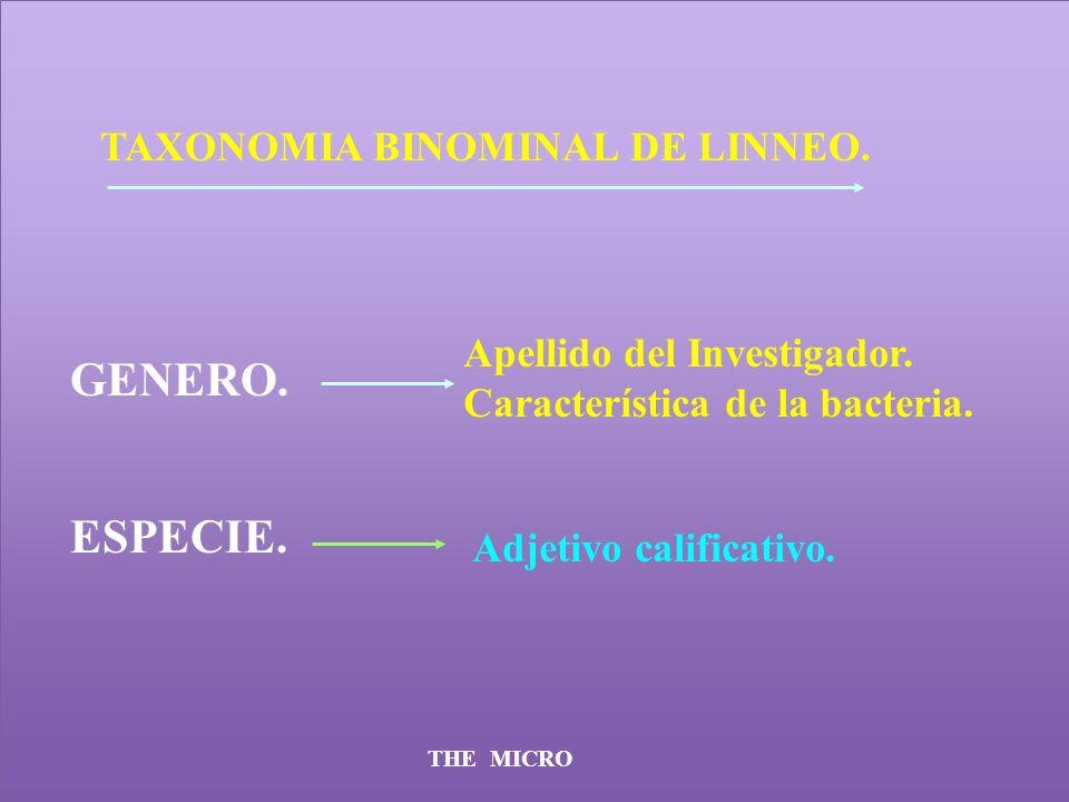 THE MICRO TAXONOMIA BINOMINAL DE LINNEO. GENERO. ESPECIE. Apellido del Investigador. Característica de la bacteria. Adjetivo calificativo.