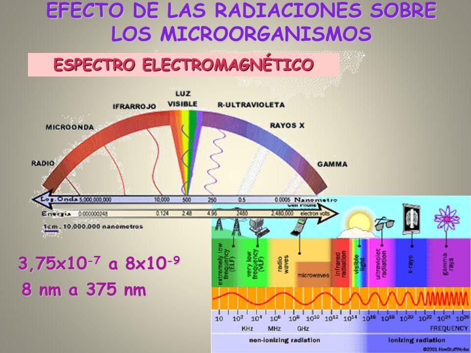 ESPECTRO ELECTROMAGNÉTICO EFECTO DE LAS RADIACIONES SOBRE LOS MICROORGANISMOS 3,75x10 -7 a 8x10 -9 8 nm a 375 nm