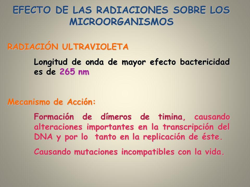 EFECTO DE LAS RADIACIONES SOBRE LOS MICROORGANISMOS RADIACIÓN ULTRAVIOLETA Longitud de onda de mayor efecto bactericidad es de 265 nm Mecanismo de Acc