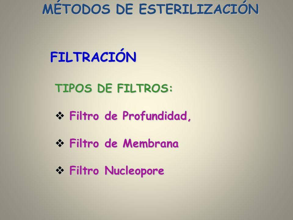 TIPOS DE FILTROS: Filtro de Profundidad, Filtro de Profundidad, Filtro de Membrana Filtro de Membrana Filtro Nucleopore Filtro Nucleopore FILTRACIÓN M