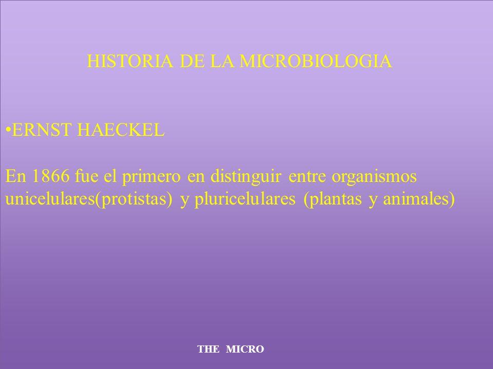 HISTORIA DE LA MICROBIOLOGIA ERNST HAECKEL En 1866 fue el primero en distinguir entre organismos unicelulares(protistas) y pluricelulares (plantas y a