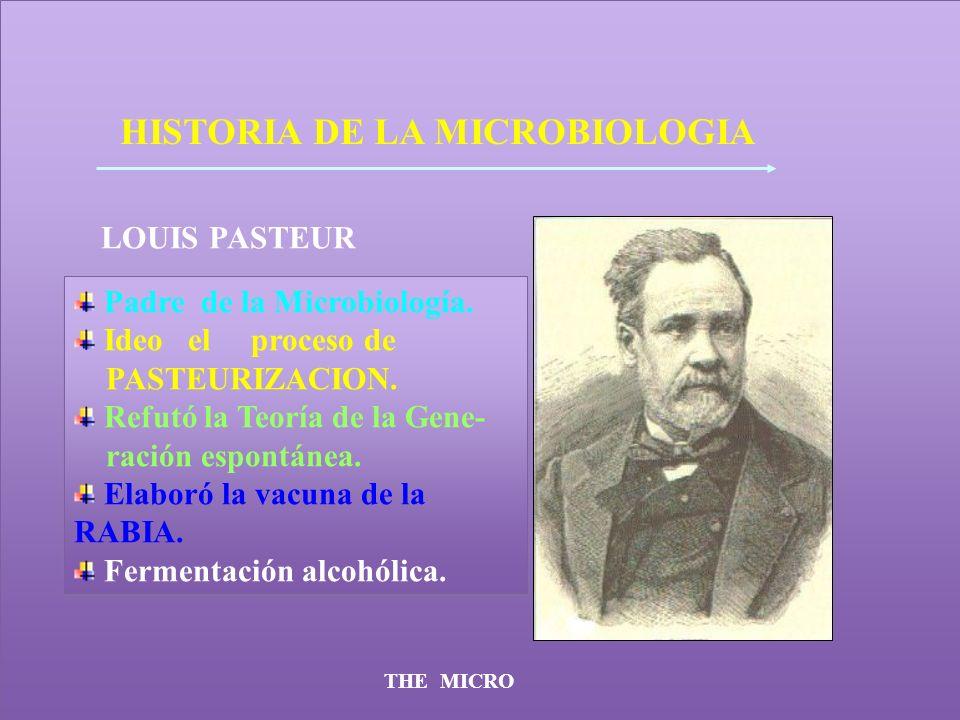 THE MICRO HISTORIA DE LA MICROBIOLOGIA LOUIS PASTEUR Padre de la Microbiología. Ideo el proceso de PASTEURIZACION. Refutó la Teoría de la Gene- ración
