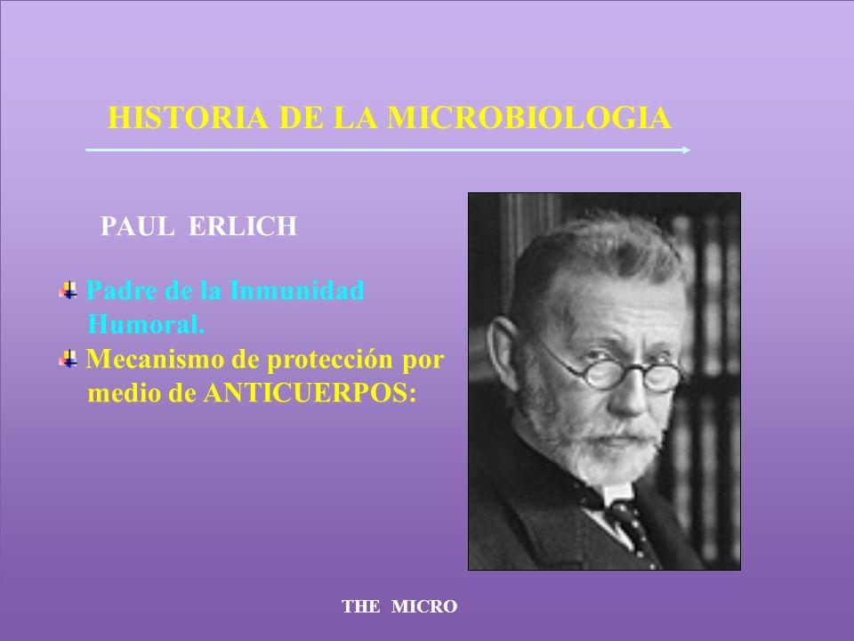 THE MICRO HISTORIA DE LA MICROBIOLOGIA PAUL ERLICH Padre de la Inmunidad Humoral. Mecanismo de protección por medio de ANTICUERPOS: