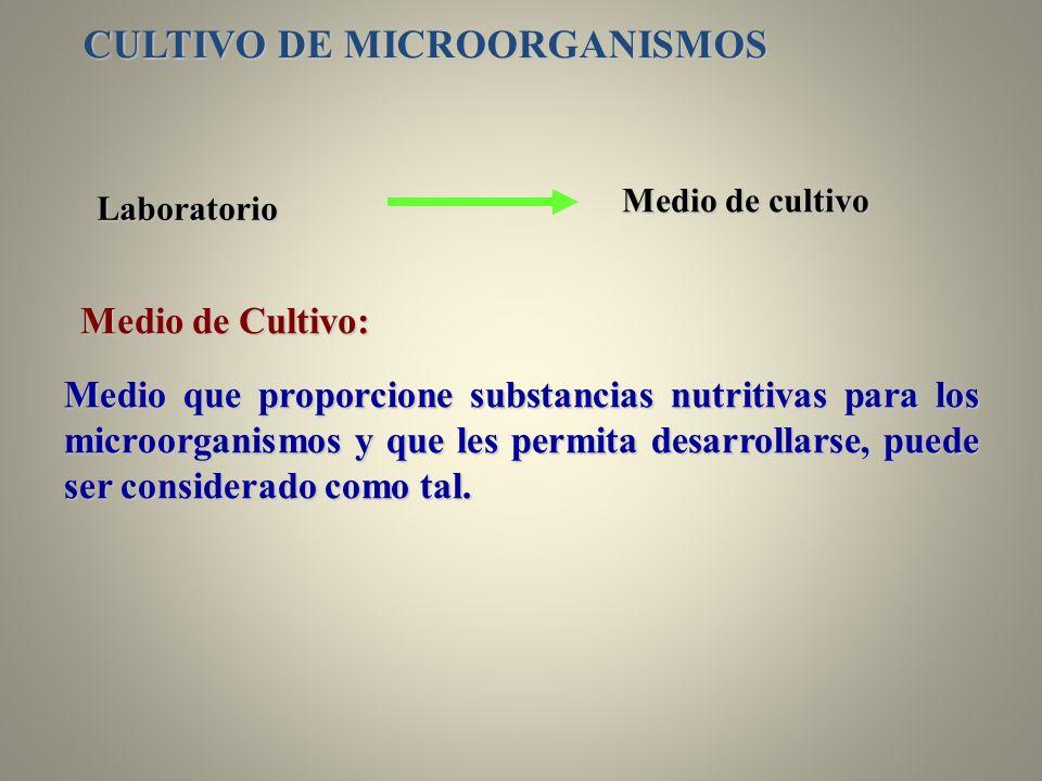 Medio de Cultivo: Medio que proporcione substancias nutritivas para los microorganismos y que les permita desarrollarse, puede ser considerado como ta