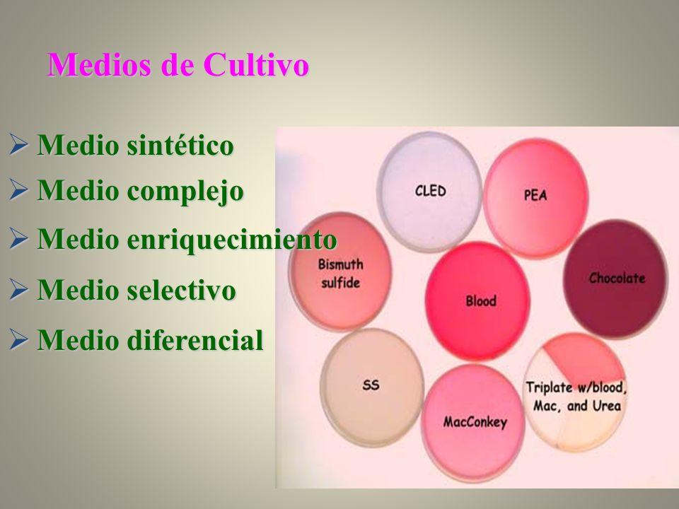 Medio sintético Medio sintético Medio complejo Medio complejo Medio enriquecimiento Medio enriquecimiento Medio selectivo Medio selectivo Medio difere