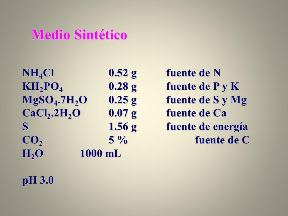 Medio Sintético NH 4 Cl0.52 gfuente de N KH 2 PO 4 0.28 gfuente de P y K MgSO 4.7H 2 O0.25 gfuente de S y Mg CaCl 2.2H 2 O0.07 gfuente de Ca S1.56 gfu