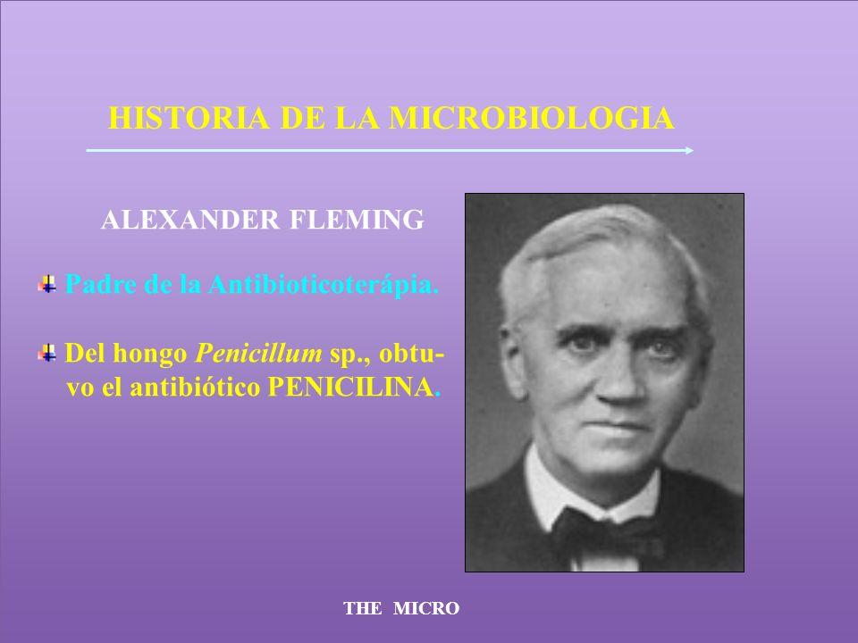 THE MICRO HISTORIA DE LA MICROBIOLOGIA ALEXANDER FLEMING Padre de la Antibioticoterápia. Del hongo Penicillum sp., obtu- vo el antibiótico PENICILINA.