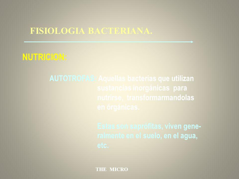 THE MICRO FISIOLOGIA BACTERIANA. NUTRICION: AUTOTROFAS: Aquellas bacterias que utilizan sustancias inorgánicas para nutrirse, transformarmandolas en ó