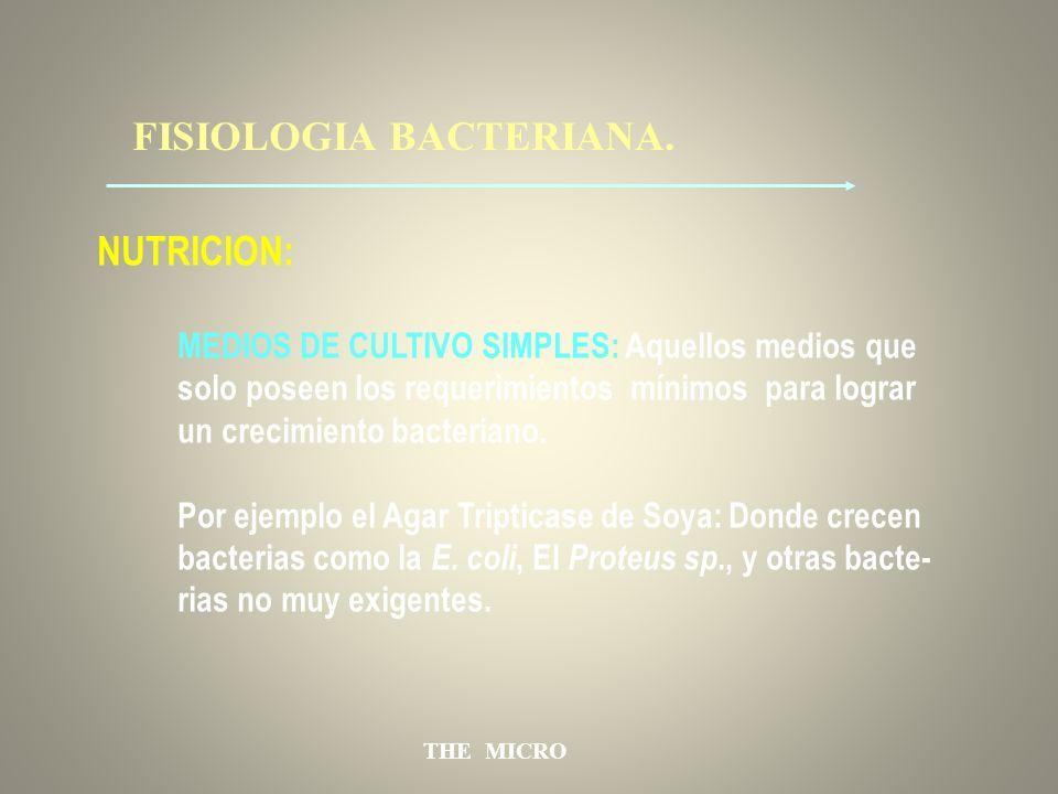 THE MICRO FISIOLOGIA BACTERIANA. NUTRICION: MEDIOS DE CULTIVO SIMPLES: Aquellos medios que solo poseen los requerimientos mínimos para lograr un creci