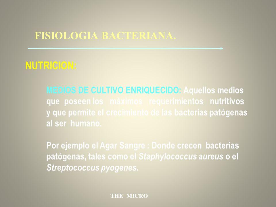 THE MICRO FISIOLOGIA BACTERIANA. NUTRICION: MEDIOS DE CULTIVO ENRIQUECIDO: Aquellos medios que poseen los máximos requerimientos nutritivos y que perm