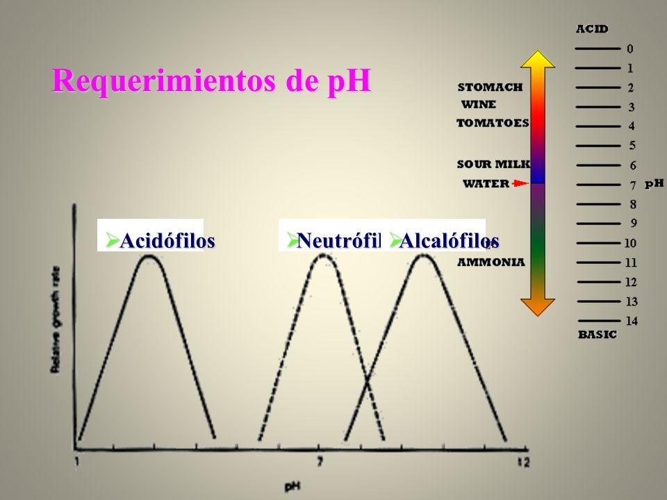 Requerimientos de pH Acidófilos Acidófilos Neutrófilos Neutrófilos Alcalófilos Alcalófilos