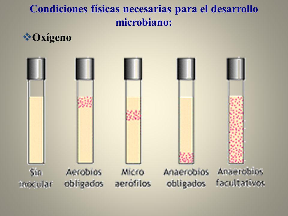 Oxígeno Condiciones físicas necesarias para el desarrollo microbiano: