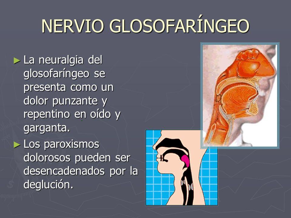 NERVIO GLOSOFARÍNGEO La neuralgia del glosofaríngeo se presenta como un dolor punzante y repentino en oído y garganta. La neuralgia del glosofaríngeo