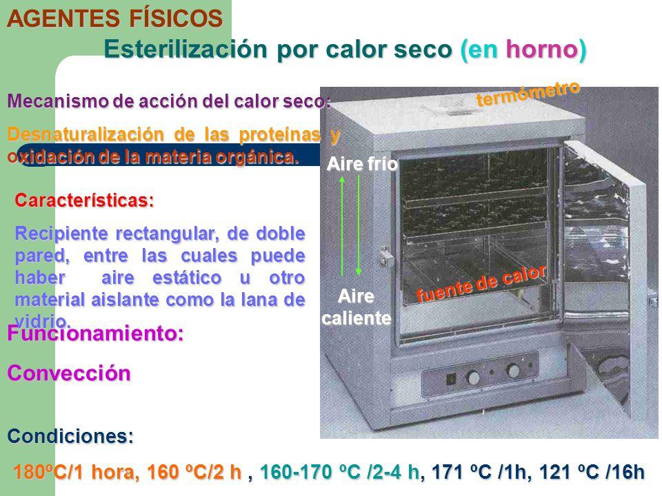 Funcionamiento:Convección Esterilización por calor seco (en horno) AGENTES FÍSICOS Mecanismo de acción del calor seco: Desnaturalización de las proteí